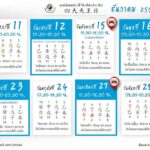 safe timing auspice 12-2015
