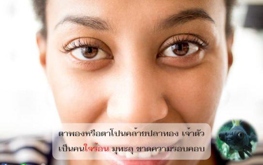 คนที่มีตาพองโปน วิถีชีวิตมักพบอุปสรรค เหน็ดเหนื่อย จากอุปนิสัยใจร้อน